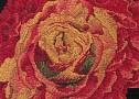 Rose8753sm