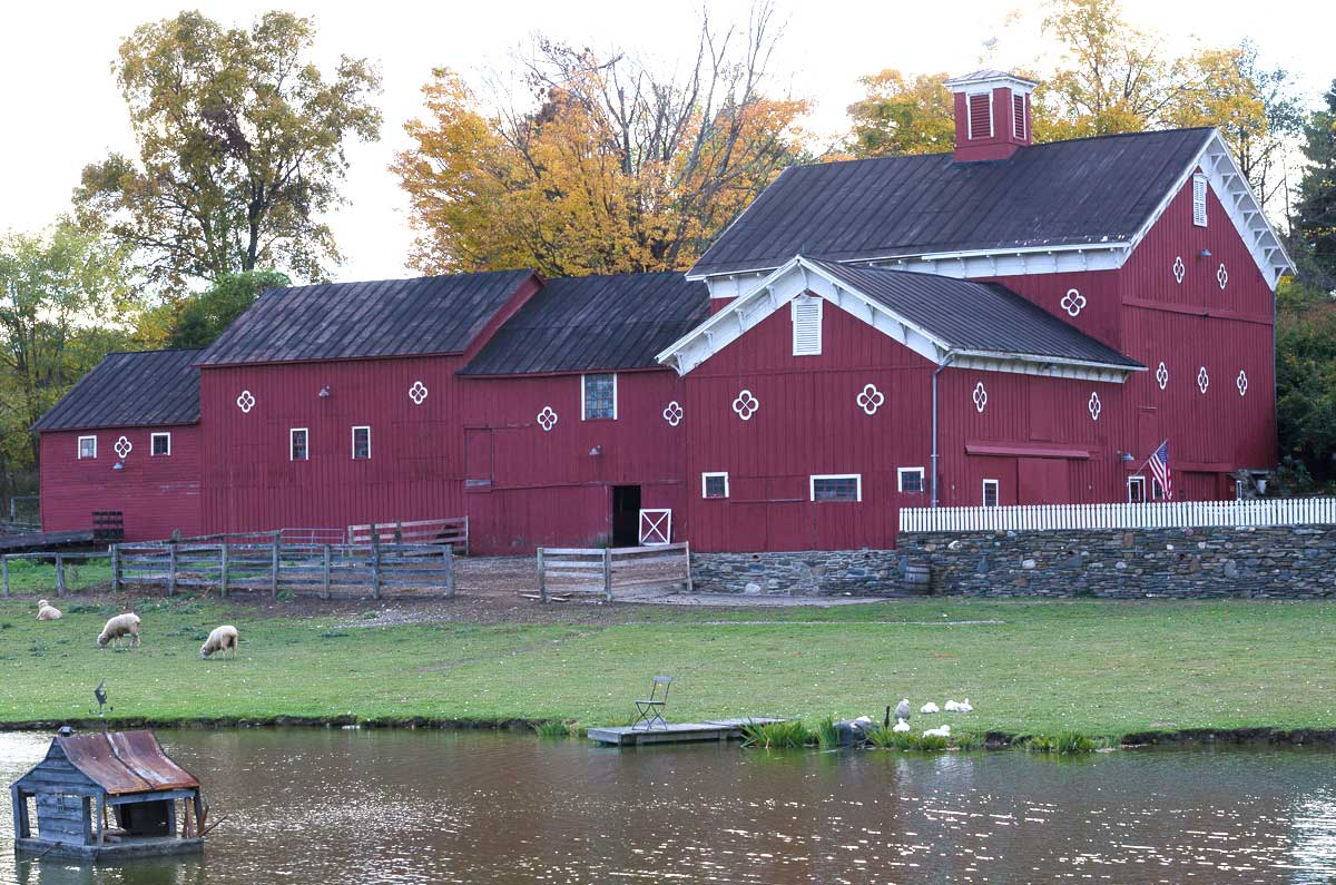 red barn with sheep